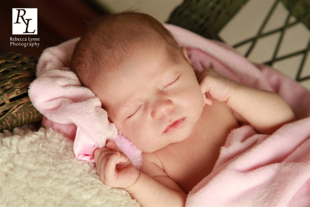Camellia : 3 weeks old : Little Miracles Baby Plan (1/2)